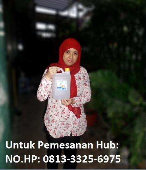 KANDUNGAN MINERAL SARI BAHARI INDONESIA DAN MANFAATNYA